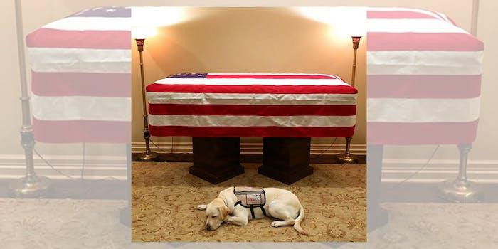 Sully George H.W. Bush Casket