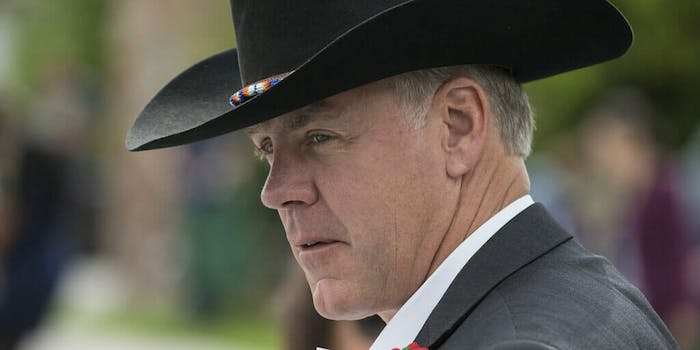 zinke interior cabinet out