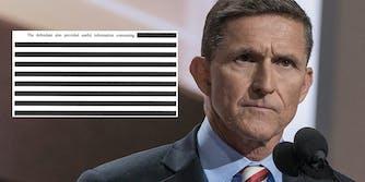 mike flynn redacted