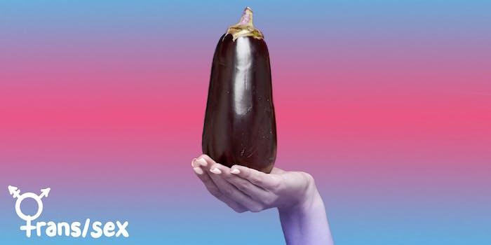 trans sex eggplant