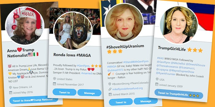 Conservative social media accounts all look the same.