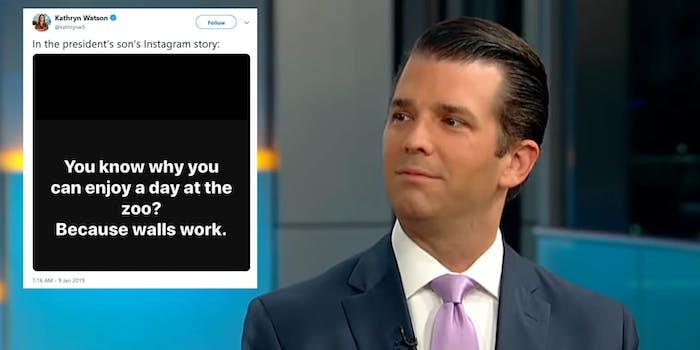 Trump Jr. Zoo Walls