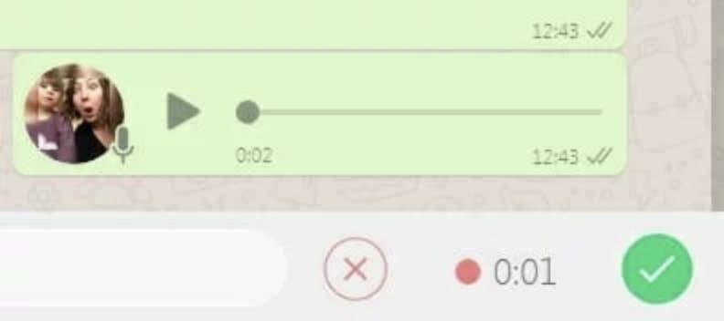 how to download whatsapp on desktop mac pc - voice messaging