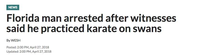 florida man karate swan