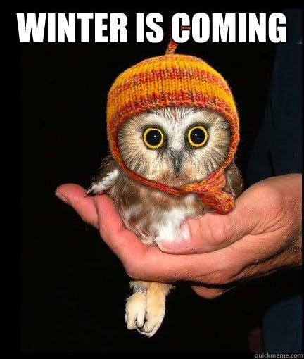 game of thrones winter is coming owl meme