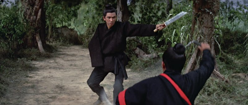 best marital arts movies amazon - one armed swordsman