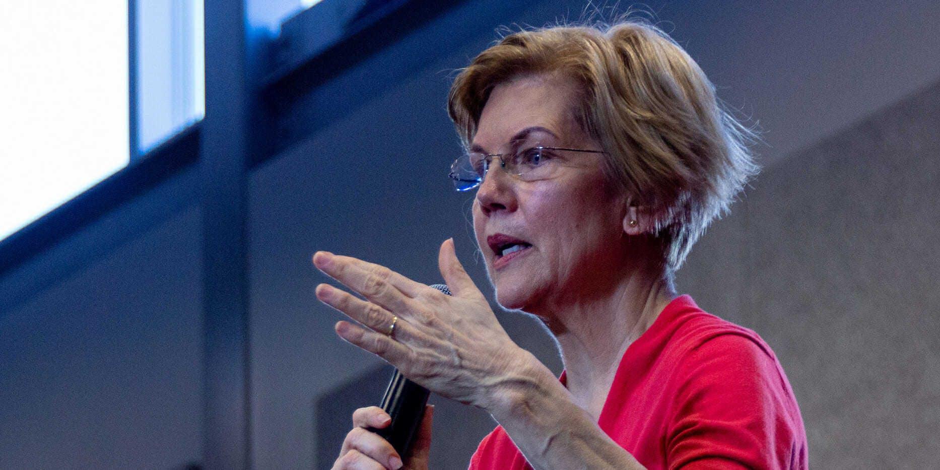 Elizabeth Warren 2020 platform issues