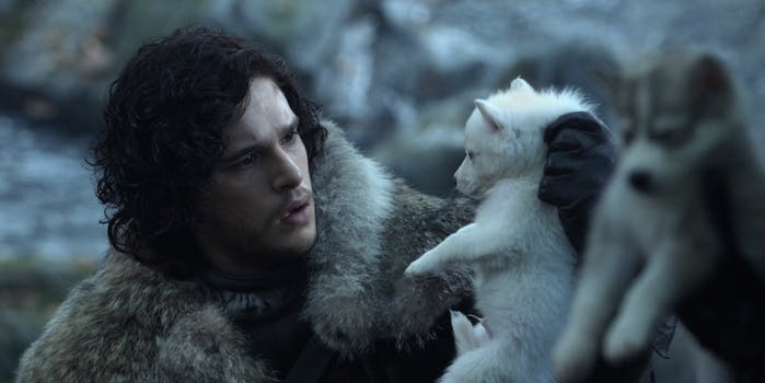 game of thrones direwolves living
