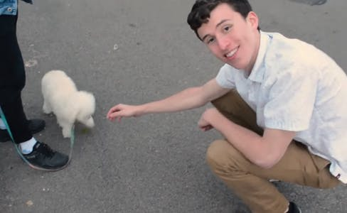 tinder video dog