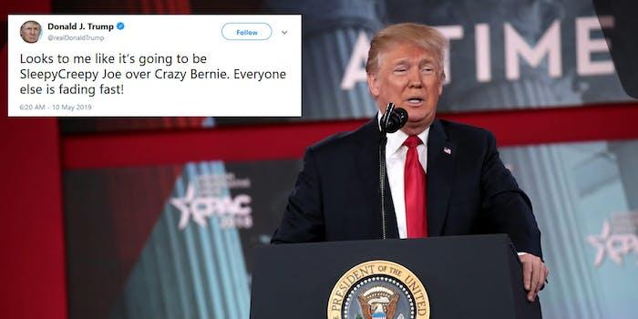 Donald Trump Joe Biden Bernie Sanders 2020 Tweet