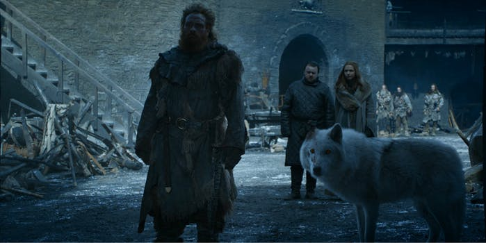 Game of Thrones - ghost