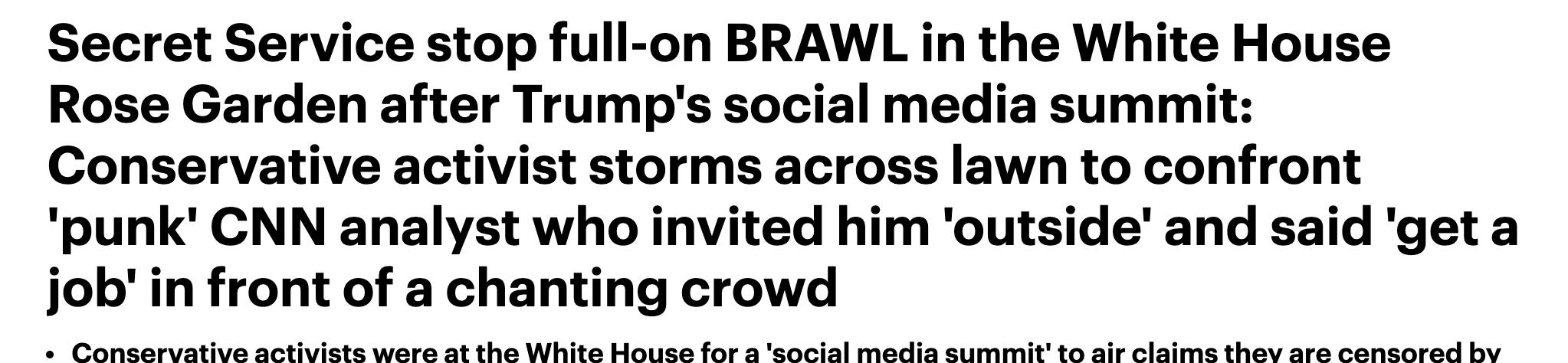 daily mail gorka brawl