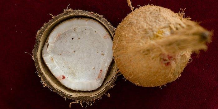 spell coconut