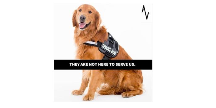 vegans service animals