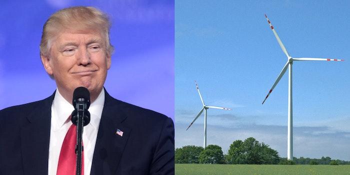 Donald Trump Dreams And Windmills