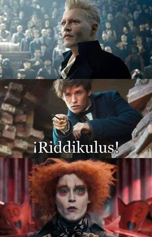 Harry Potter memes - Grindelwald