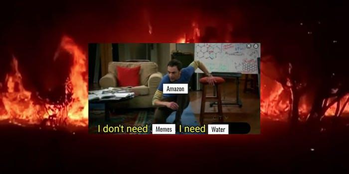 amazon-rainforest-fire-memes