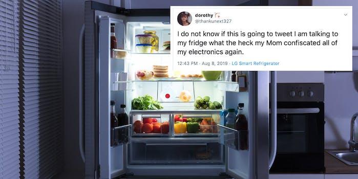 fridge memes