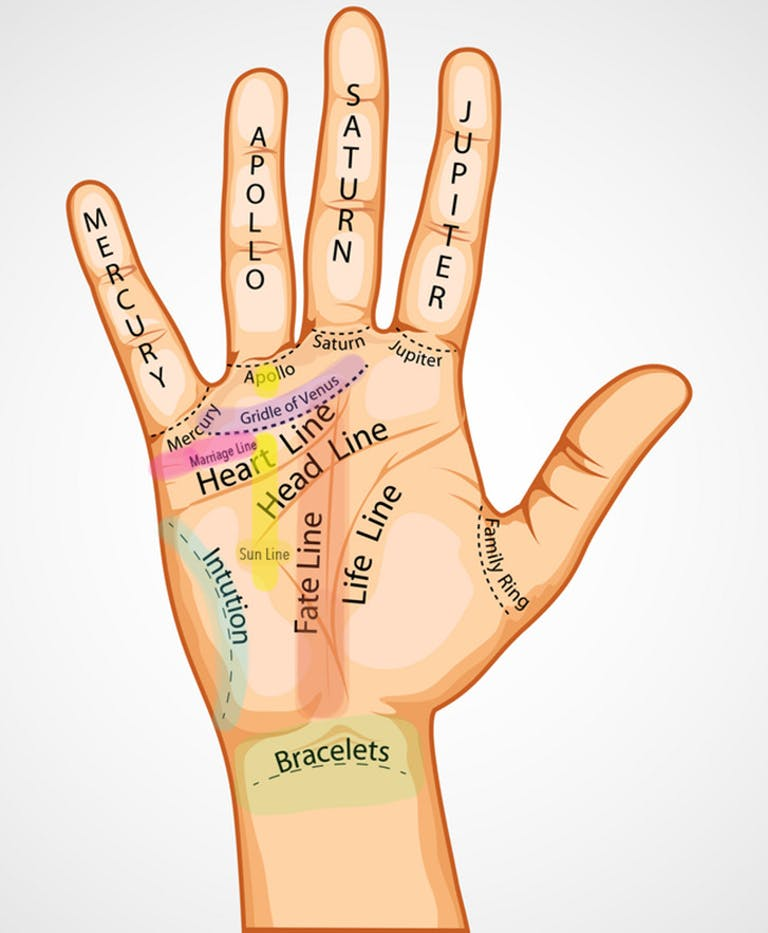"""Illustration of the """"minor lines"""" in palmistry. Some of what palm readers look for during a session."""