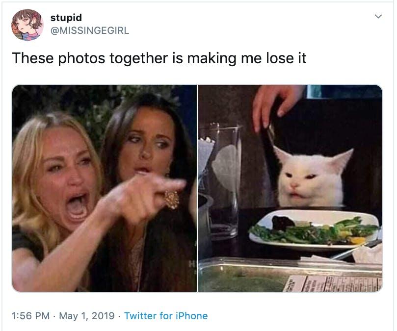 woman yelling at cat