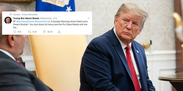 Donald Trump Retweets Shark Bot