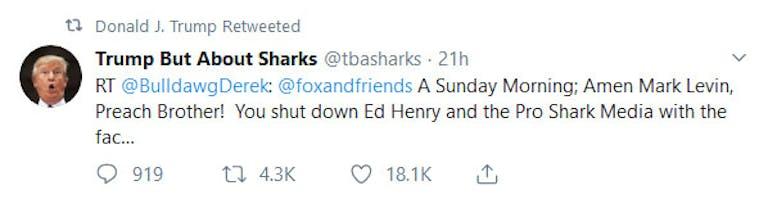 Donald Trump Sharks Pro Shark Media Retweet
