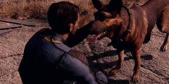 Fallout 4 companions - Dogmeat