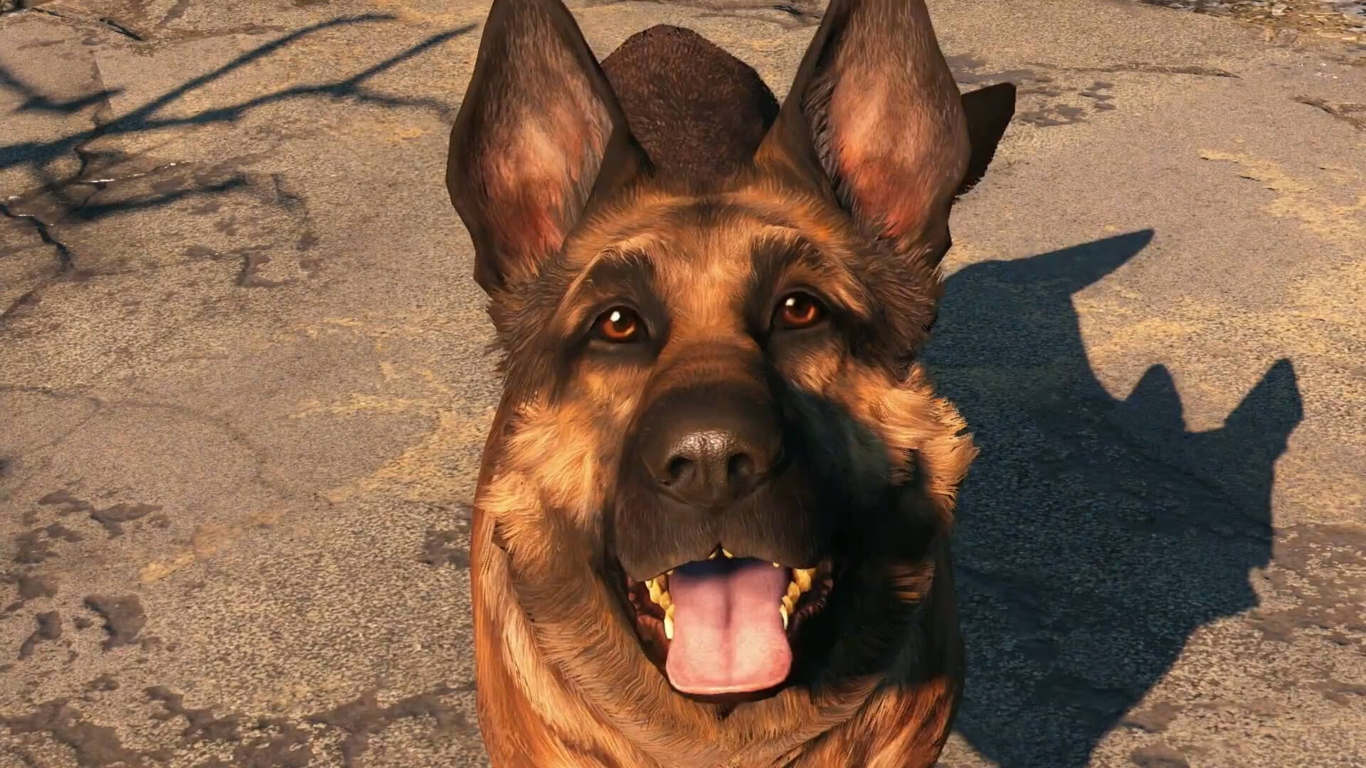 Fallout 4 - Dogmeat