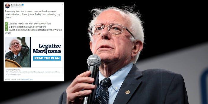 Bernie Sanders Marijuana Legalization 420 Tweet