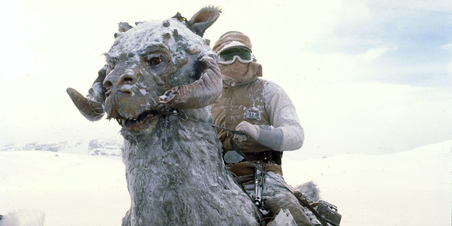 Star Wars creatures - Tauntaun