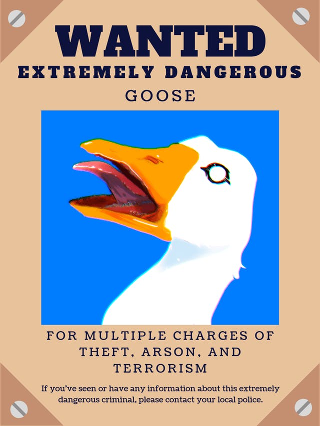 An illustrated wanted sign for a goose.