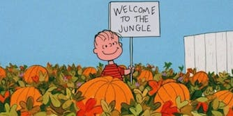 "linus in the pumpkin patch holding sign that says ""welcome to the jungle"""