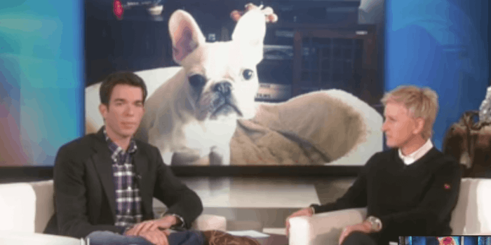 John mulaney scooter dog ellen
