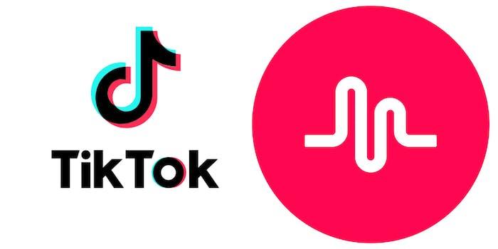 tiktok including musically cover