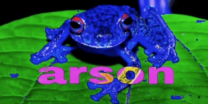 arson frog meme
