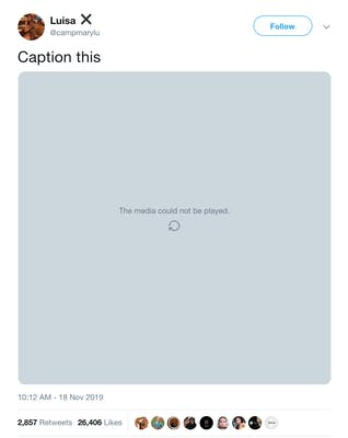 campmarylou club viral tweet