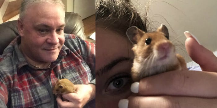 dad daughter hamster twitter