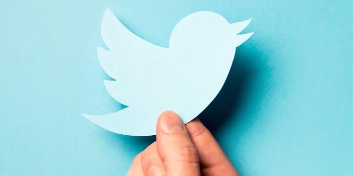 holding twitter bird