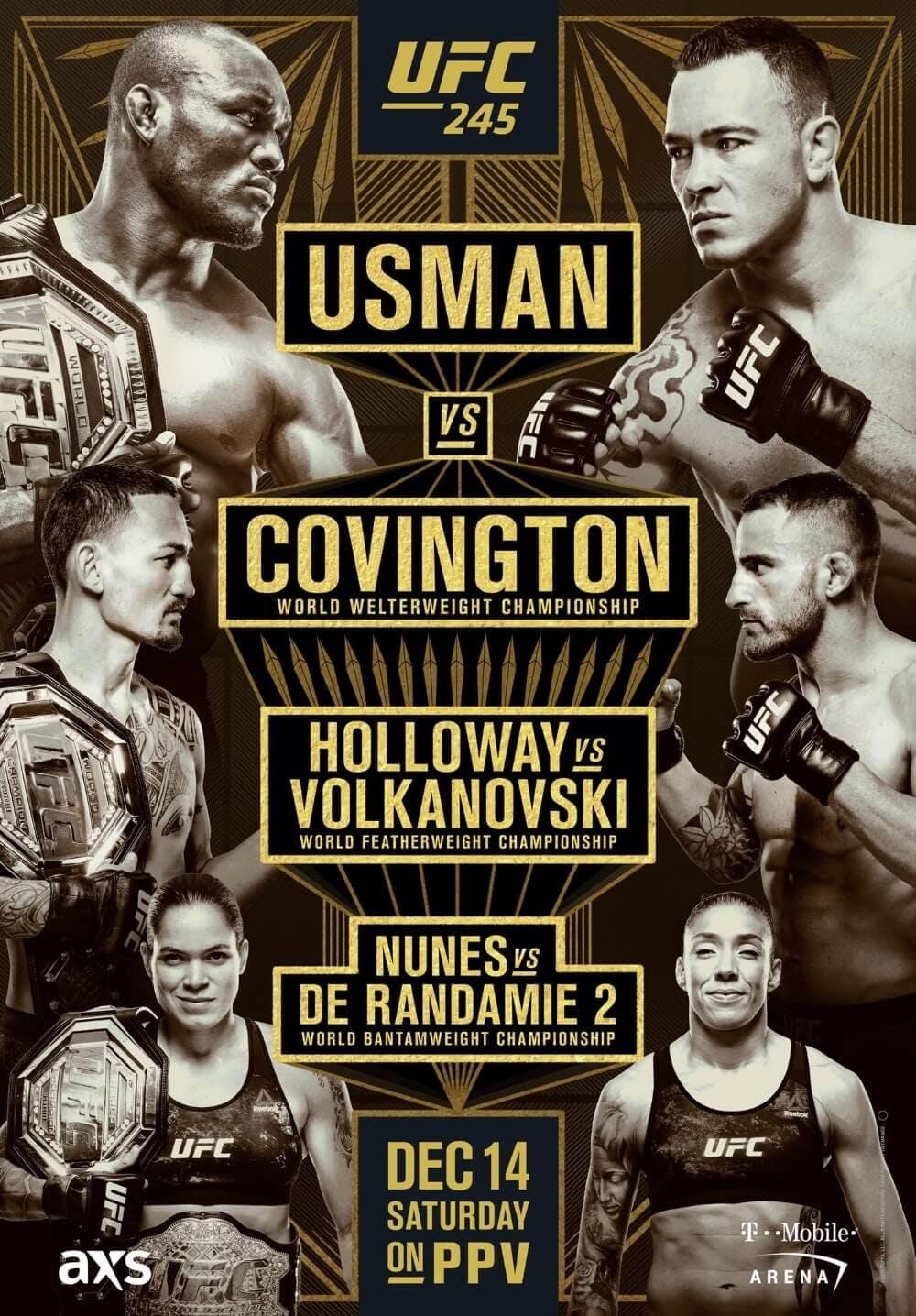UFC 245 poster stream