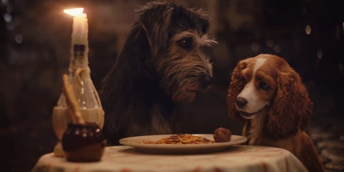 watch lady and the tramp