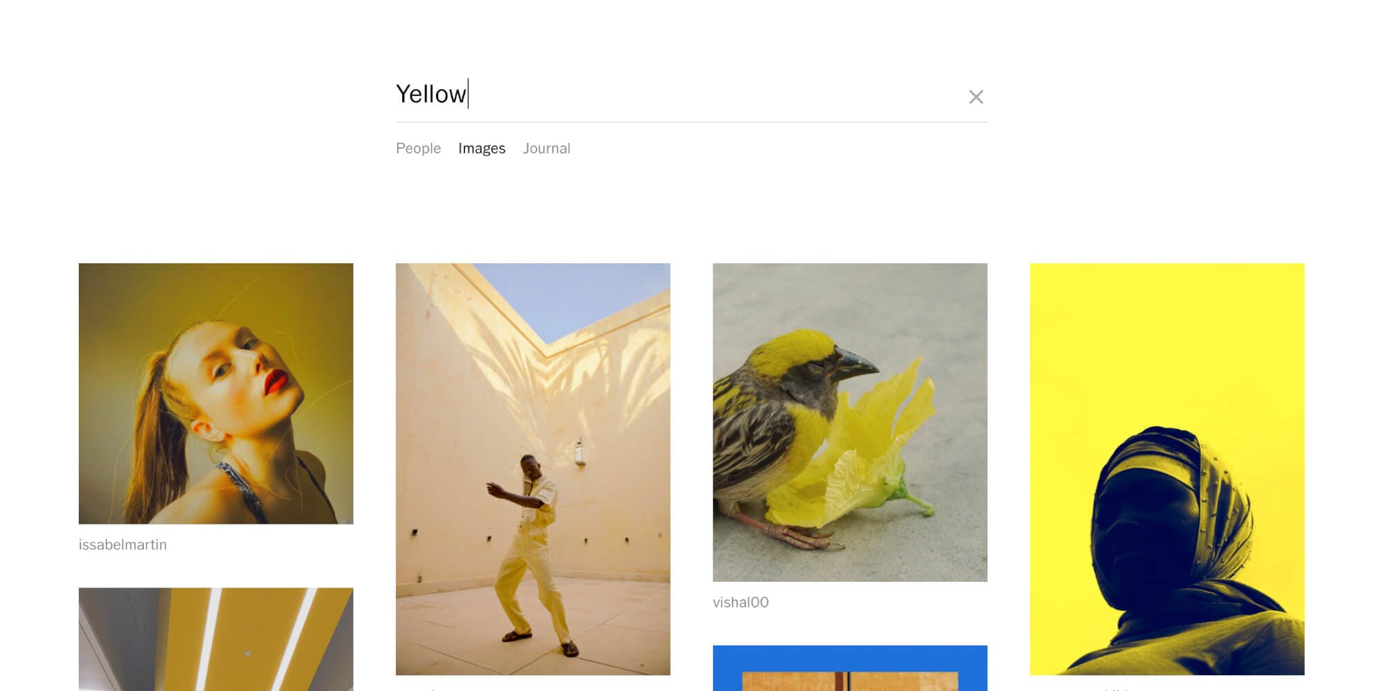 """Image showing VSCO search results for the tag """"yellow"""""""