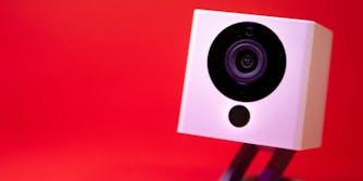 Wyze Cameras Data Leak