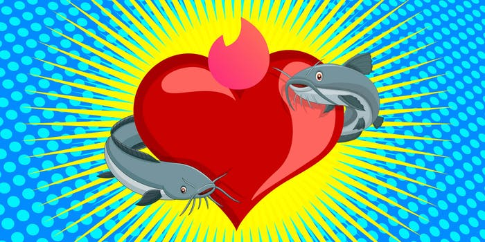 two catfish circling a heart with a tinder flame at the top
