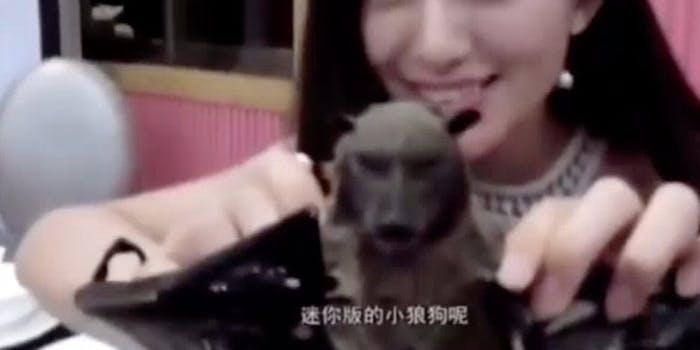 Wang Mengyun seen with a bat