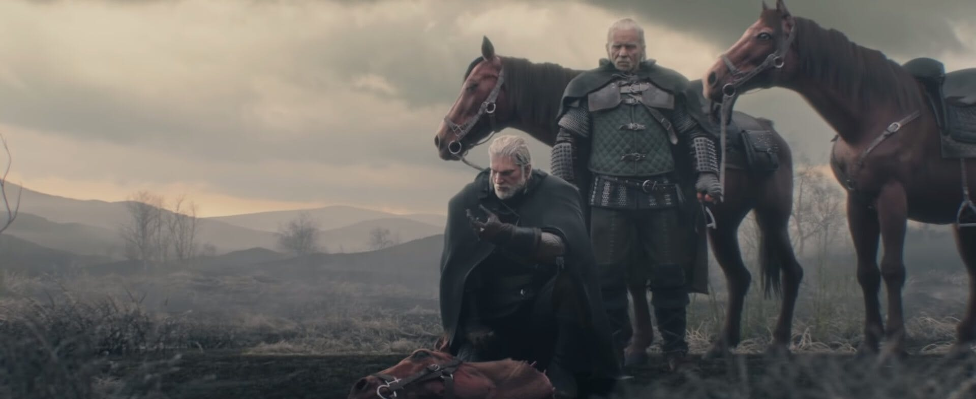 The Witcher - video games