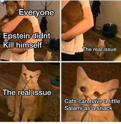 as a treat meme
