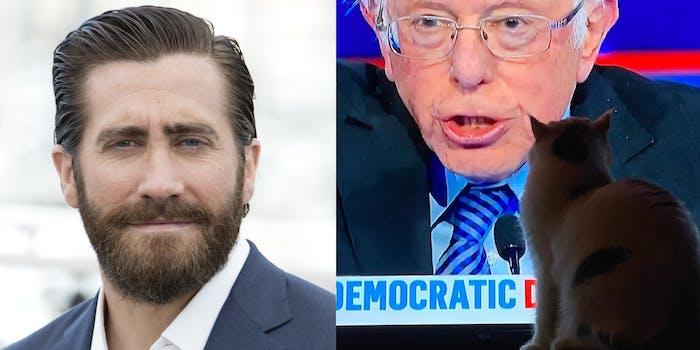 Jake Gyllenhaal - Bernie