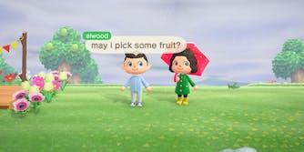 Elijah Wood Animal Crossing