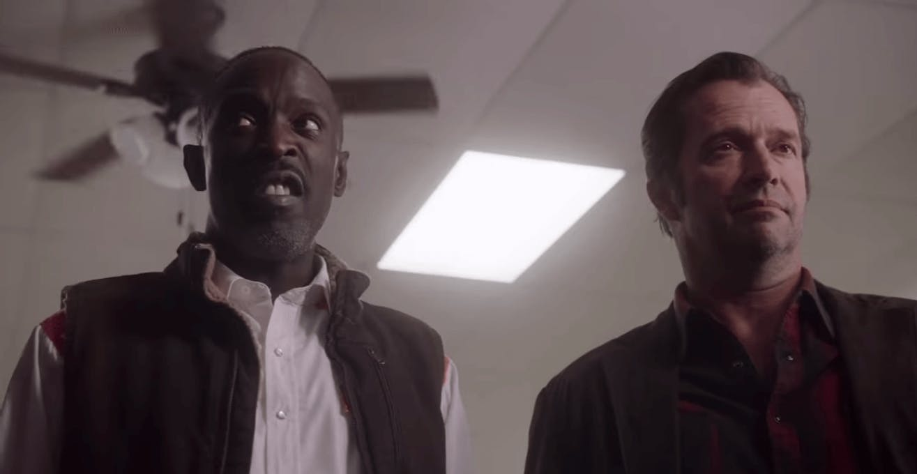 Mystery Shows Hap and Leonard