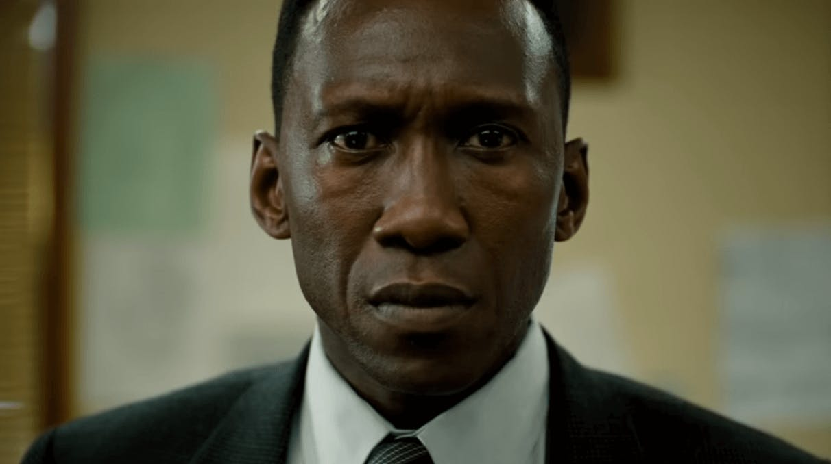 Mystery Shows True Detective